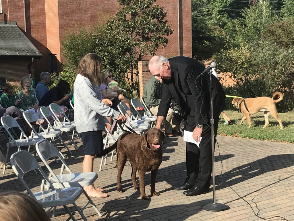 Pet Blessing Service 2019