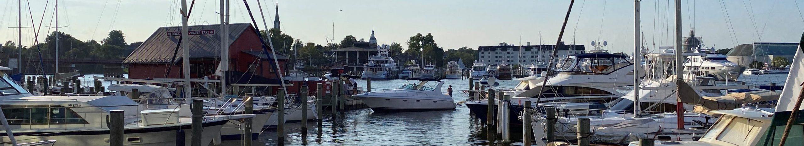 Scene of Annapolis Harnbor